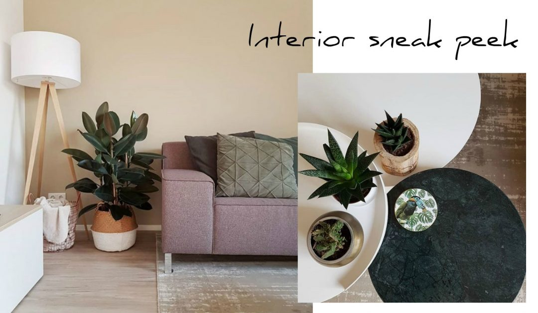 interiorsneakpeek